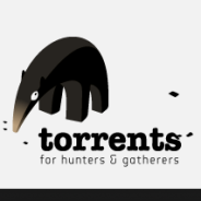 Torrents.to cerca in 500+ siti e motori di ricerca torrent